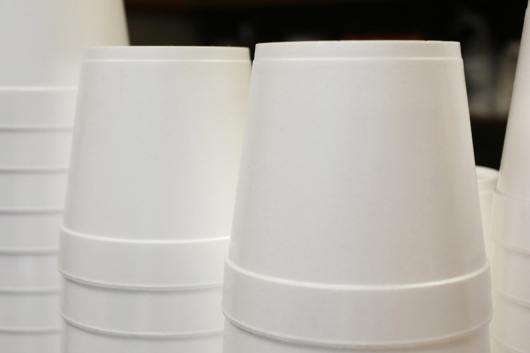 , Maine becomes 1st state to ban single-use foam containers, The Circular Economy, The Circular Economy