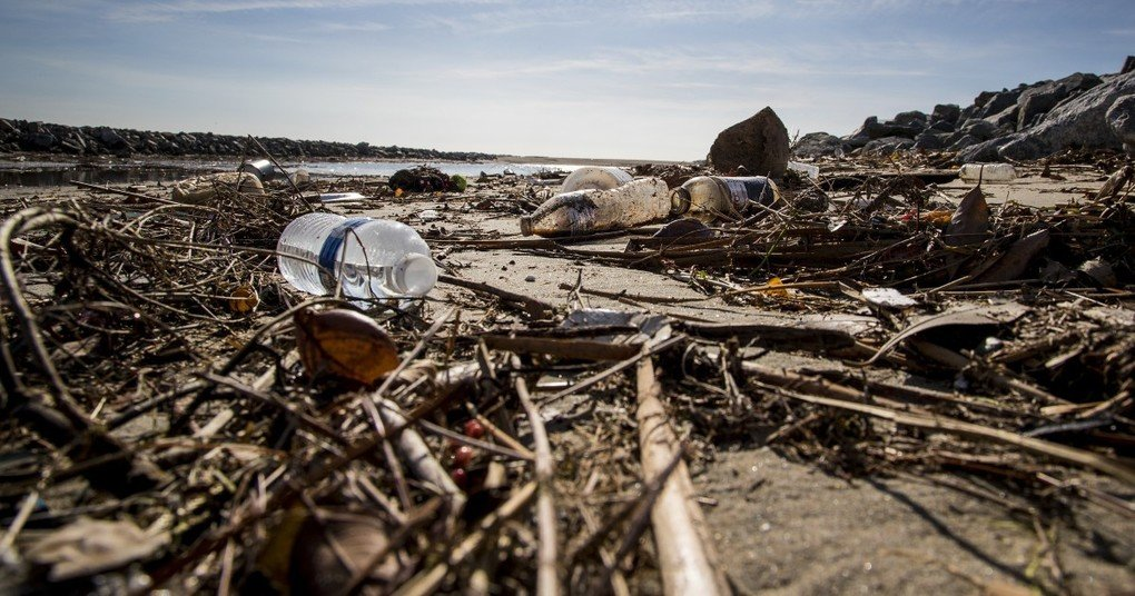 , California single-use plastic ban comes down to the wire, The Circular Economy, The Circular Economy