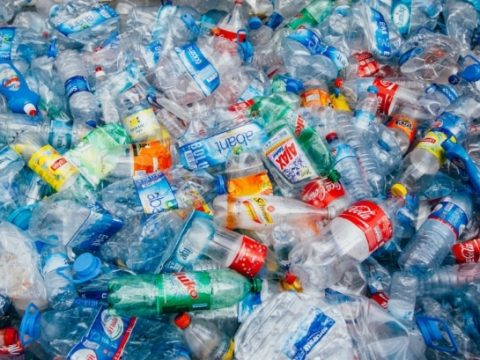 , Britain's single-use sustainability crisis extends far beyond plastic, says Green Alliance, The Circular Economy