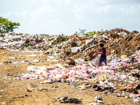 , India is Working to Ban all Single-Use Plastic Products by 2022, The Circular Economy, The Circular Economy
