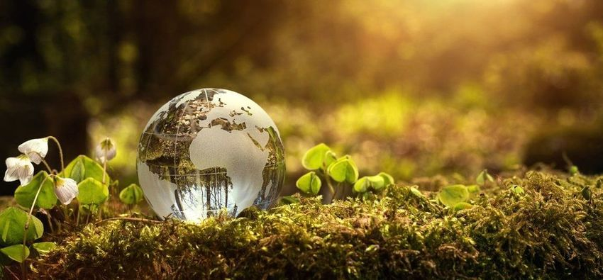 , Estée Lauder Companies reports 'significant progress' in environmental sustainability goals, The Circular Economy, The Circular Economy