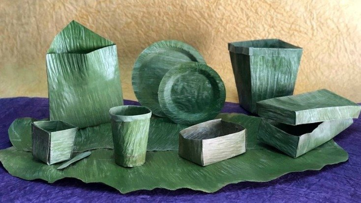 , This Company Is Replacing Single-Use Plastics With Banana Leaves, The Circular Economy
