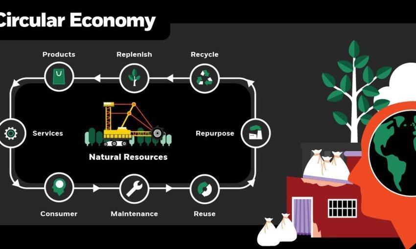 Sippets: November 2019, The Circular Economy