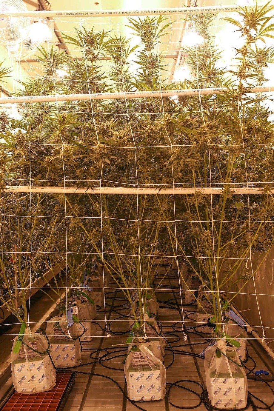 , Southern California weed cultivators leading the way in sustainability, The Circular Economy