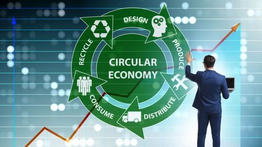 , The Circular Economy: Strategic Foresight from 2030, The Circular Economy, The Circular Economy