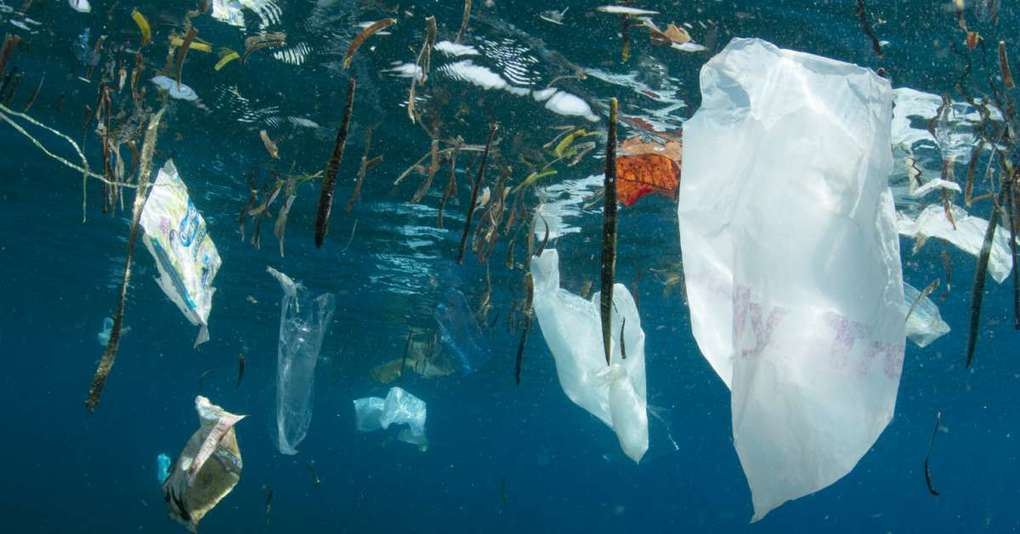 , India's Plastic Industry Demands Clarity On Single-Use Plastic Ban, The Circular Economy