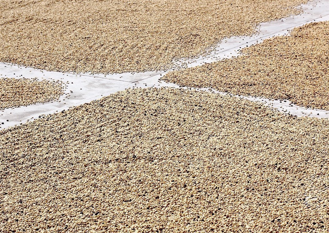 , Coffee at a Crossroads, The Circular Economy