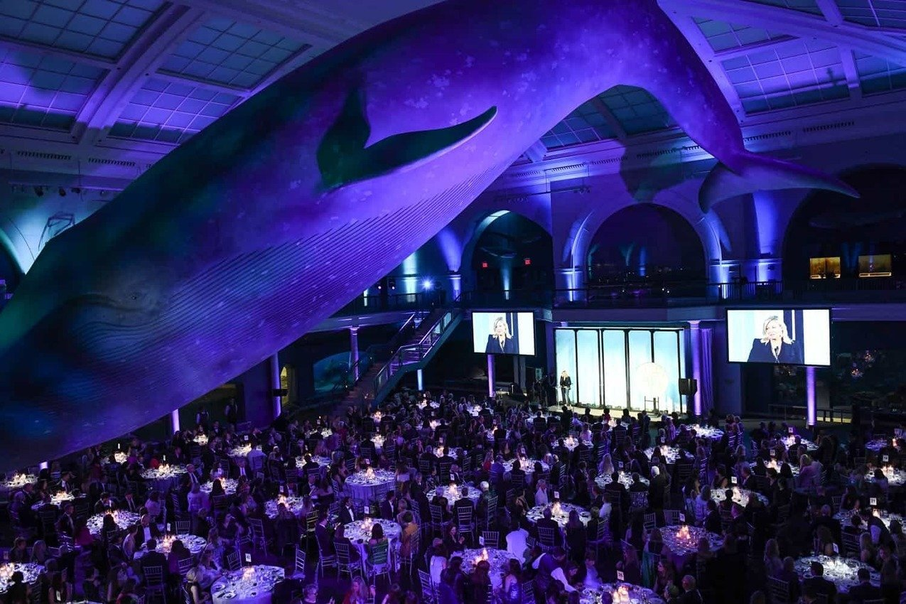 , FIT Celebrates Innovation In Sustainability at Their 2019 Gala Fundraiser, The Circular Economy, The Circular Economy