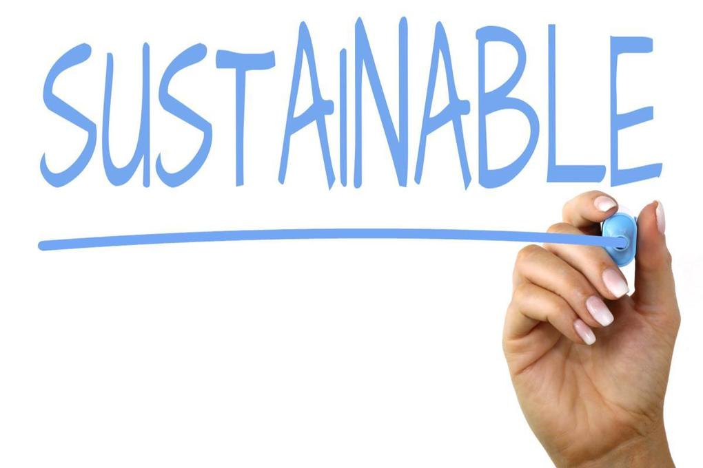 , Defining and Measuring Sustainability, The Circular Economy, The Circular Economy