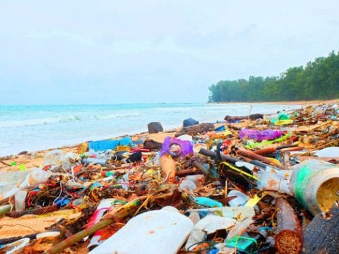 , India to ban single-use plastics on board ships in Indian waters, The Circular Economy, The Circular Economy