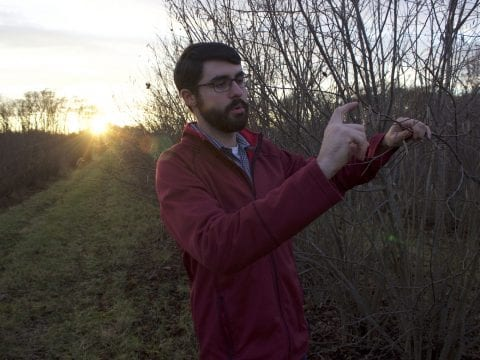 , Profit, sustainability lead to hazelnuts experiment in N.J. farming, The Circular Economy, The Circular Economy
