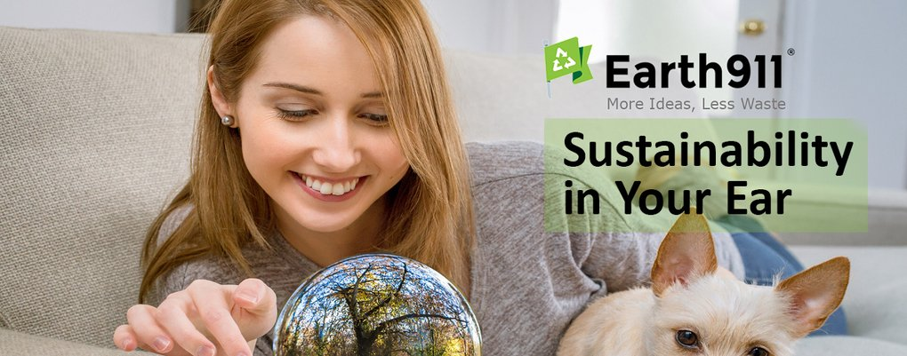 The iRecyle App Is Back & Summer Sustainability, The Circular Economy