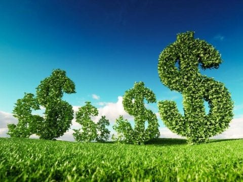 , The Green Climate Fund must be a champion for real sustainability, The Circular Economy, The Circular Economy
