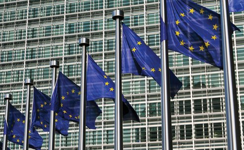 Hundreds of CEOs urge EU to deliver 'inclusive' climate and sustainability plan, The Circular Economy