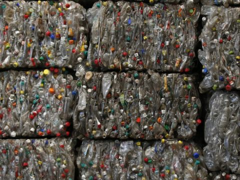 , China's plans to reduce single-use plastics, The Circular Economy, The Circular Economy