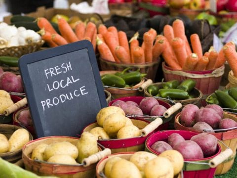 , Viewpoint: How the 'Food Justice' movement hinders progress toward equity, health, sustainability, The Circular Economy, The Circular Economy