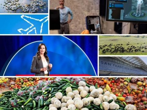 , Sustainability Round Up – Highlights of 2019 –, The Circular Economy, The Circular Economy