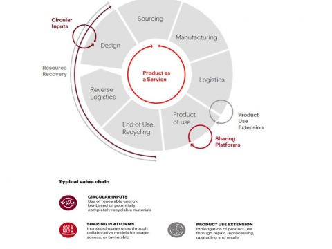 For a Sustainable Food System, Look to Seeds, The Circular Economy