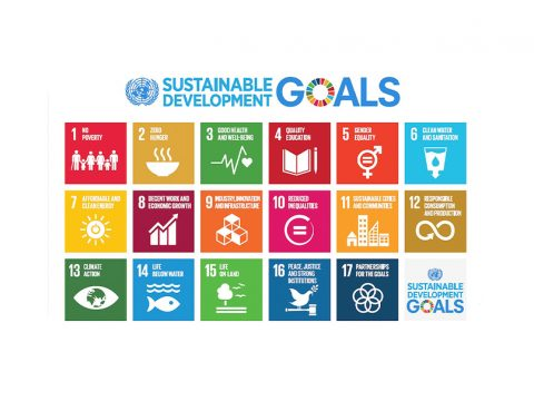 , Sustainable Event Buyer's Guide: Sustainable Development Goals & Events, The Circular Economy