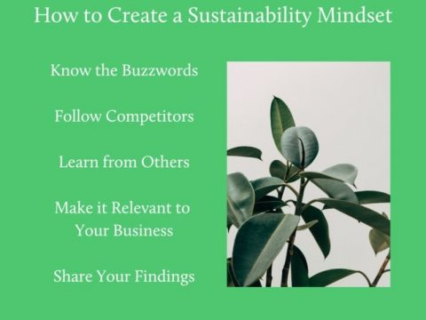 , How to Create a Sustainability Mindset, The Circular Economy