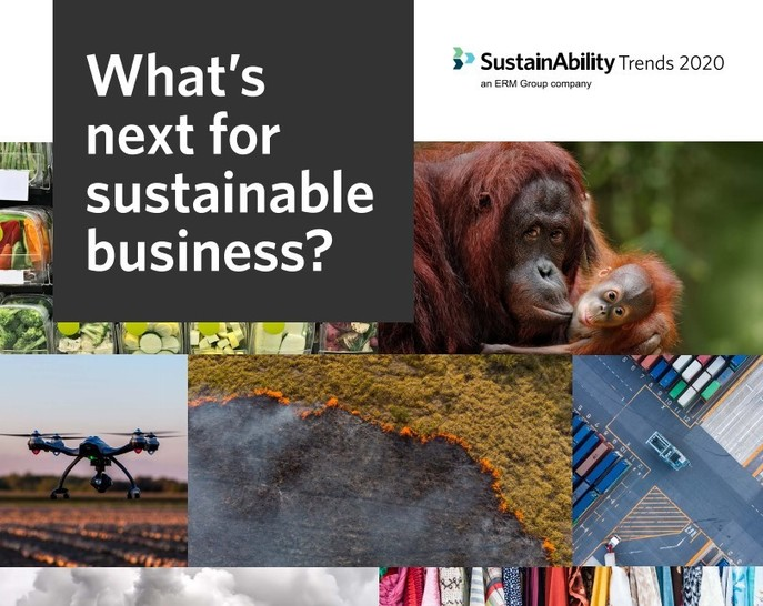 What's next for sustainable business? Sustainability trends for 2020, The Circular Economy
