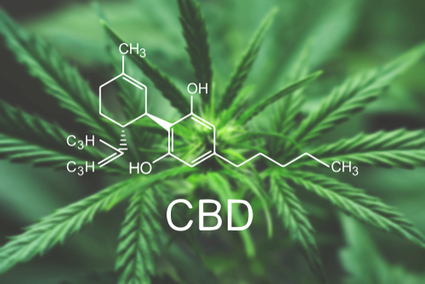 , Here Are The Tremendous Health Benefits Of Sustainable CBD, The Circular Economy