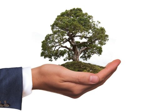 , Sustainability Focus For Trade Shows & Exhibits, The Circular Economy, The Circular Economy
