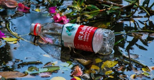 , China plans to phase out single-use plastics by 2025, The Circular Economy, The Circular Economy