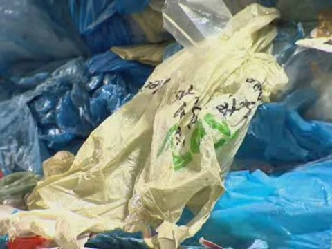 , Sobeys ditches single-use plastic bags in Halifax and across Canada, The Circular Economy