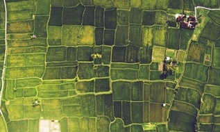 , Cultiv@te – Innovation for Sustainable Development | Press Releases | Asia | Sustainable Business, The Circular Economy