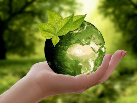 , Evolving a Sustainable Future in the United Kingdom –, The Circular Economy, The Circular Economy