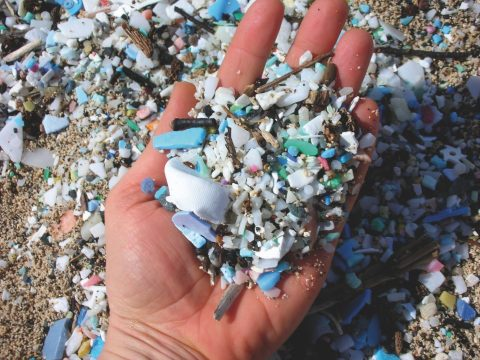 , The Sustainable Development Goals and Fighting the Plastic Soup, The Circular Economy, The Circular Economy