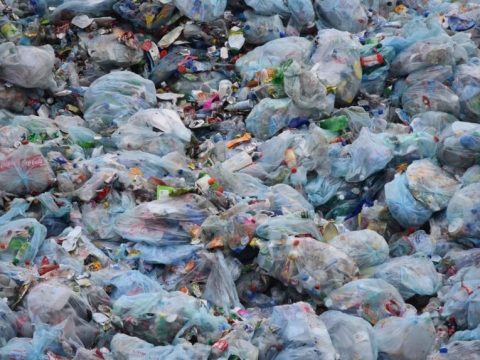 , This is why Modi govt is going slow on single-use plastic ban, The Circular Economy, The Circular Economy