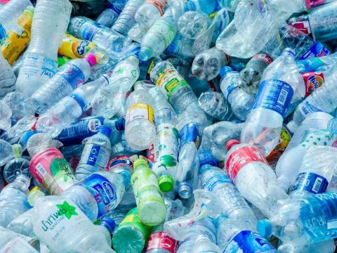 , China Pledges to Ban All Single-Use Plastics, The Circular Economy