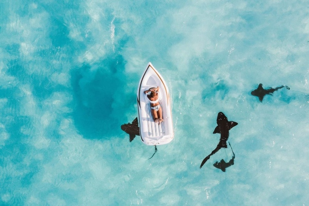 , Airbnb is offering a sustainable sabbatical in The Bahamas, The Circular Economy, The Circular Economy
