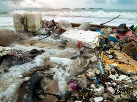 , China Calls For A Complete Ban On Single-Use Plastics, The Circular Economy