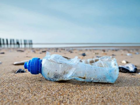 , Cape Town pledges to phase out single-use plastics, The Circular Economy, The Circular Economy