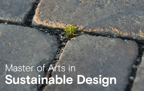 , FREE: MA in Sustainable Design info webinar!, The Circular Economy, The Circular Economy