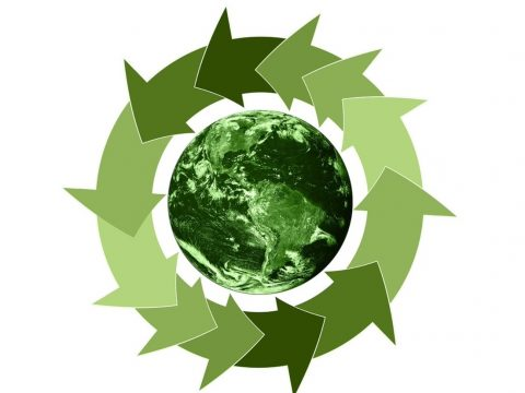 , 5 Ways Businesses Can Exercise Sustainability Practices, The Circular Economy