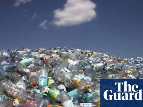 , Is it fair to blame Coca-Cola and big corporations for our waste crisis? | Guardian Sustainable Business | The Guardian, The Circular Economy