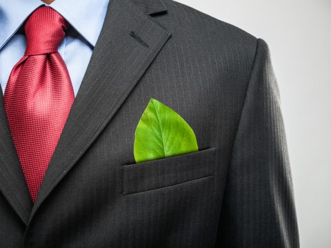 , 5 Resume Tips For Sustainability Professionals, The Circular Economy