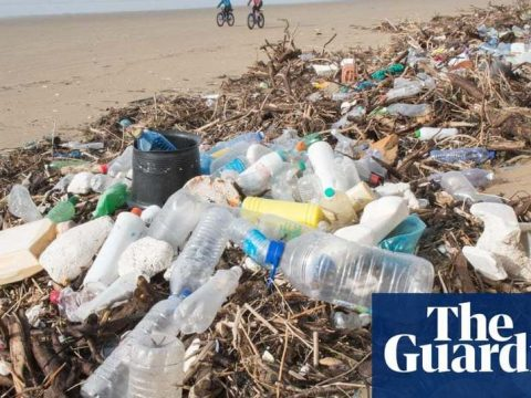 , Welsh government plans to ban single-use plastics from next year | Environment | The Guardian, The Circular Economy, The Circular Economy