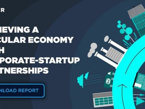 , Achieving a Circular Economy With Corporate-Startup Partnerships, The Circular Economy, The Circular Economy