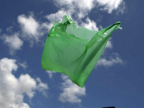 , NSW to join all other states in banning single-use plastic bags, The Circular Economy, The Circular Economy
