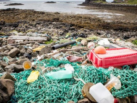 , Single use plastics to be banned in Wales, The Circular Economy
