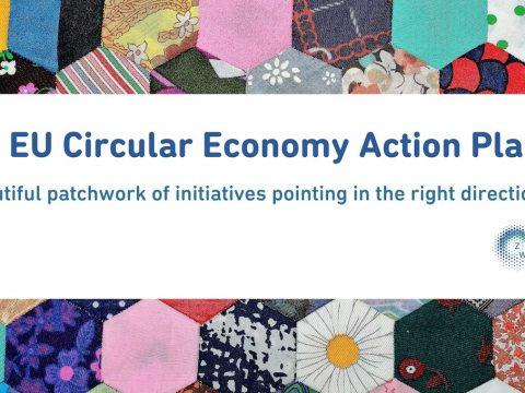 Essential Tips To Thrive When Writing Academic Papers On Sustainability, The Circular Economy