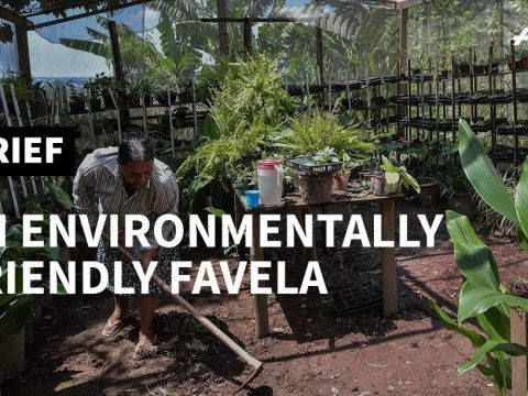 , 'Green favela' fights to live sustainably in Brazil | AFP, The Circular Economy, The Circular Economy