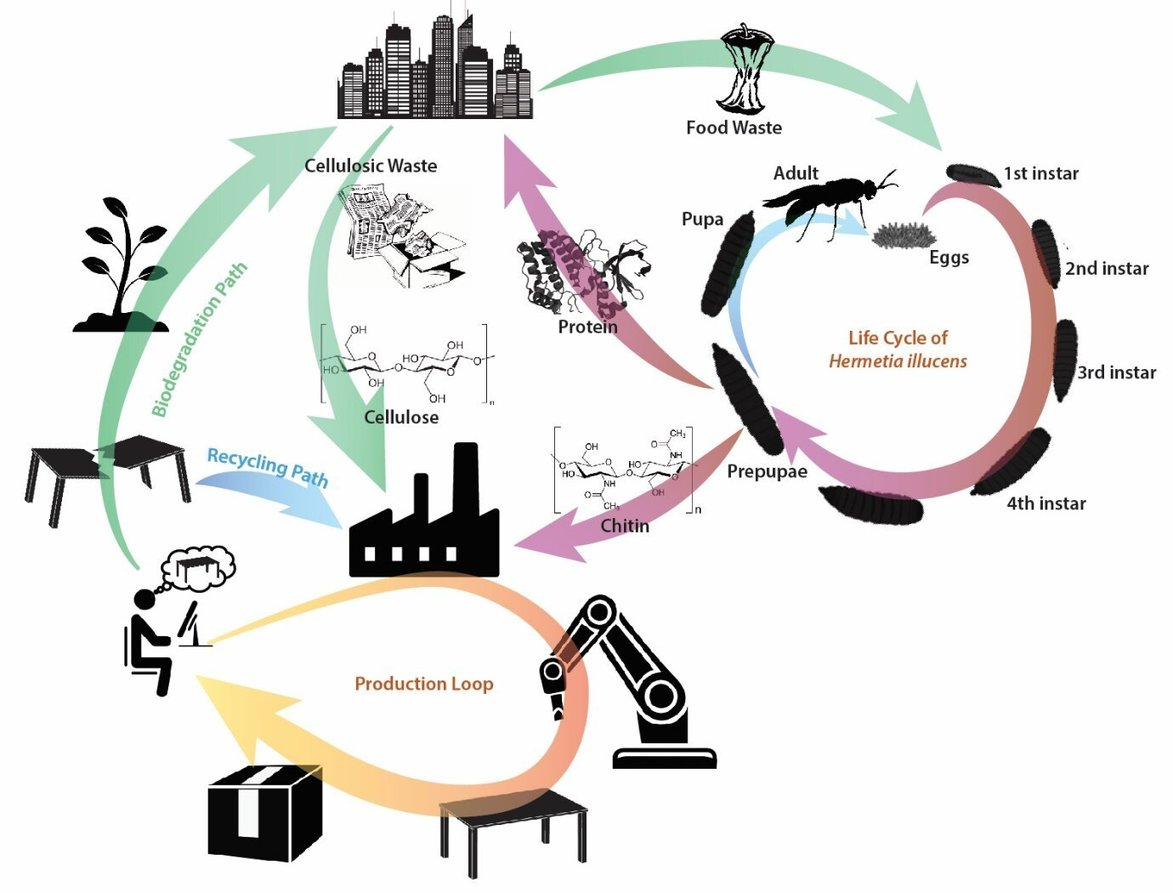 , Team develops missing link to circular economy while tackling global waste, The Circular Economy, The Circular Economy