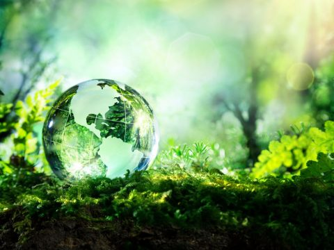 , Investors are asking the wrong questions about sustainability, The Circular Economy