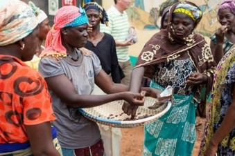 , What is sustainable cocoa?, The Circular Economy, The Circular Economy
